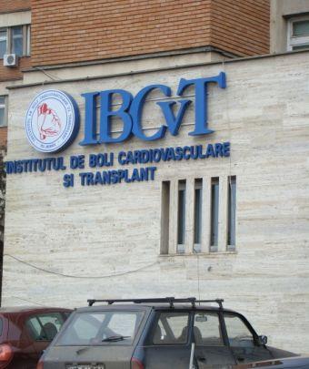 Az IBCvT újraalapítása mellett döntött a Kormány