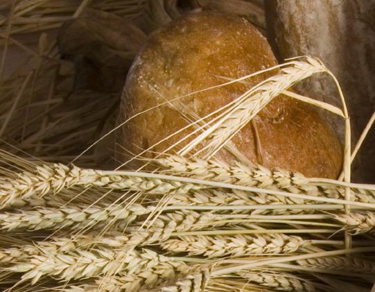 Nem csökken a kenyér ÁFÁ-ja
