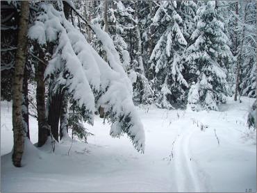 A szilveszteréjszaka volt a legfagyosabb ezen a télen Romániában