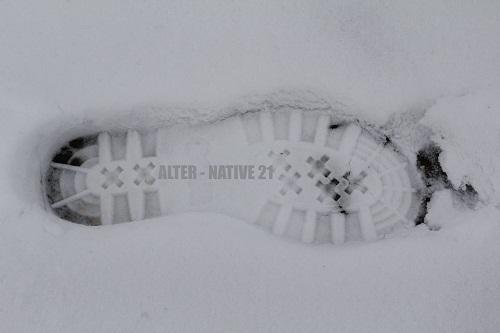 alter-nativ2013