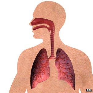 A tüdő betegségei okozzák minden tizedik európai lakos halálát