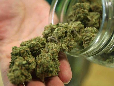 Románia az EU tizedik országa, amely orvosi célra engedélyezi a cannabis-t