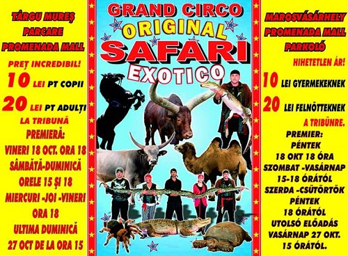 safari-cirkusz.jpg