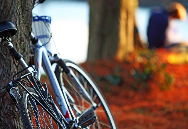 250 kerékpárt vásárolna a Marosvásárhelyi Polgármesteri Hivatal