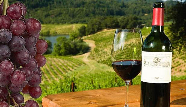 Két százalékkal nő idén a világon a bortermelés, Olaszország a világelső