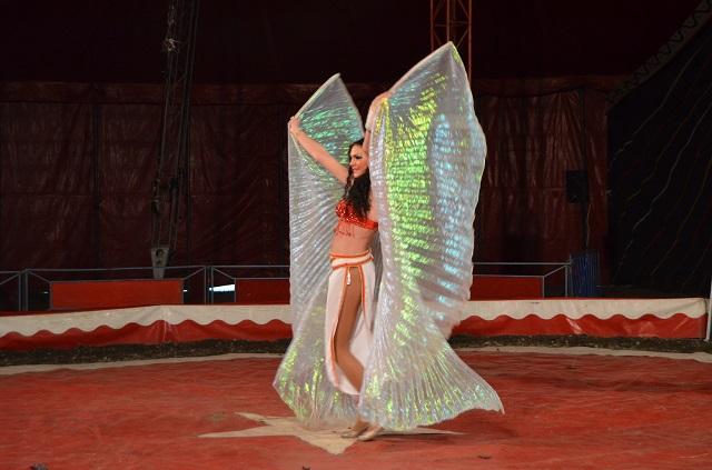 cirkusz12