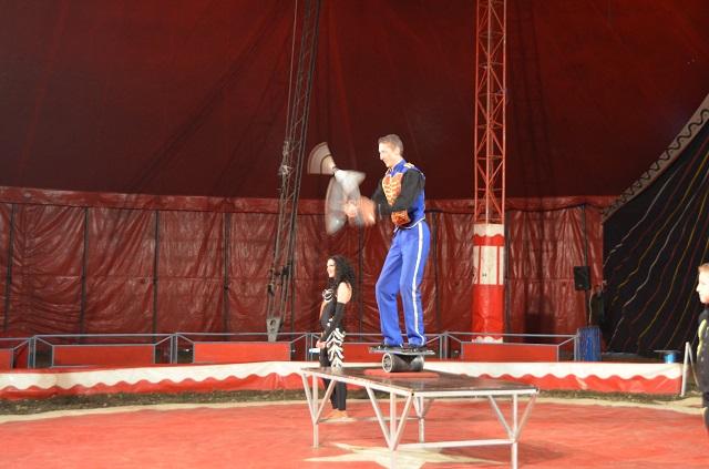 cirkusz4