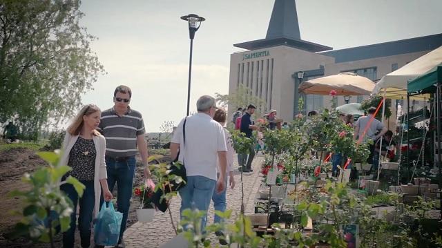 Második alkalommal szervezik meg a Sapientia egyetemen a kertészeti kiállítást és vásárt